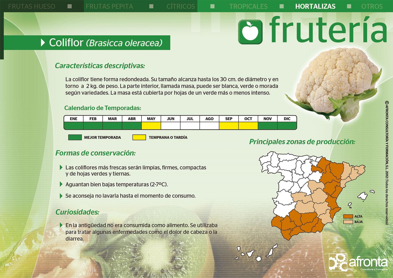 Ficha de producto de Frutería - Cursos frutería