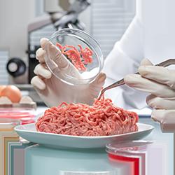 Implantación de Sistemas de Calidad Alimentaria - Afronta Consultoría y Formación
